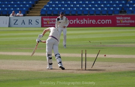 Middle Stump by Phil Edwards