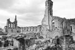 BYLAND ABBEY by Paul Coverdale