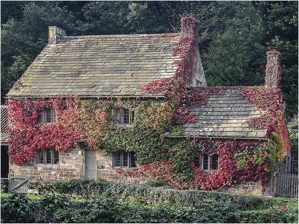 P FOUNTAIN'S COTTAGE by Bob Harper