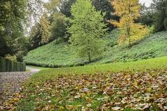 Autumn-Time