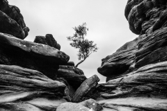 13 STUCK BETWEEN A ROCK AND A HARD PLACE by Glynn Rhodes