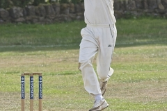 Fast Bowler in Action by Harry Watson