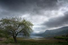 Derwent Lament by Rob Mason