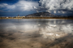 Trapani Salt Lake by Willem Van Herp