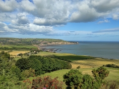 Robin Hoods Bay by Dave Rippon