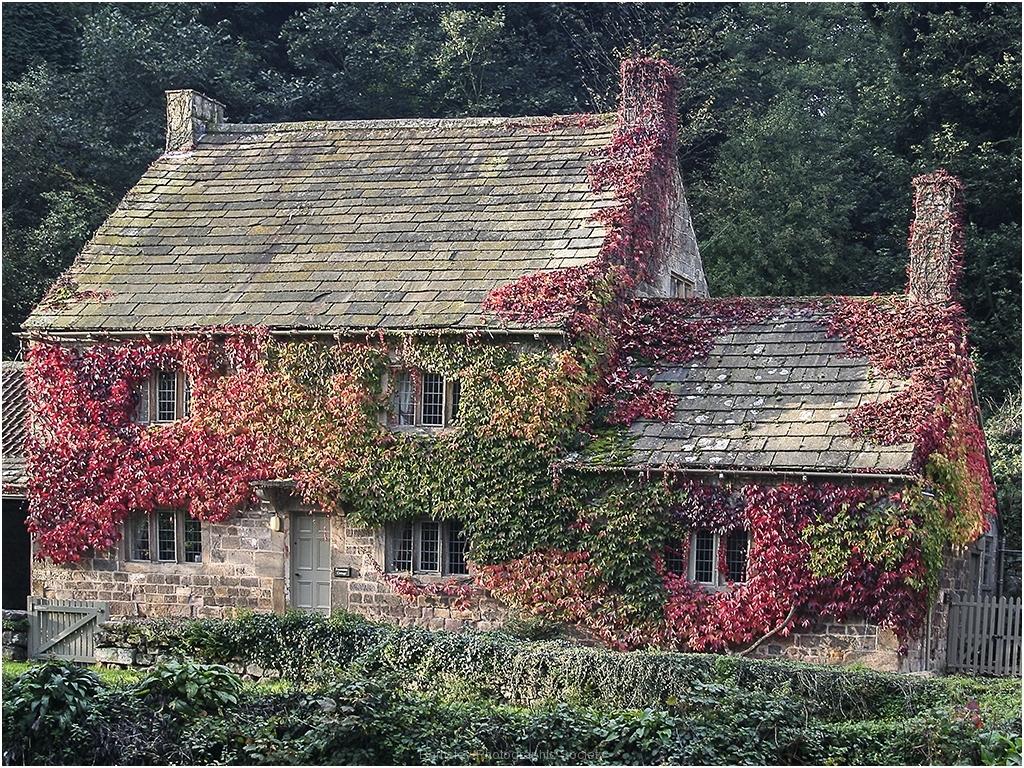 Fountain's Cottage by Bob Harper