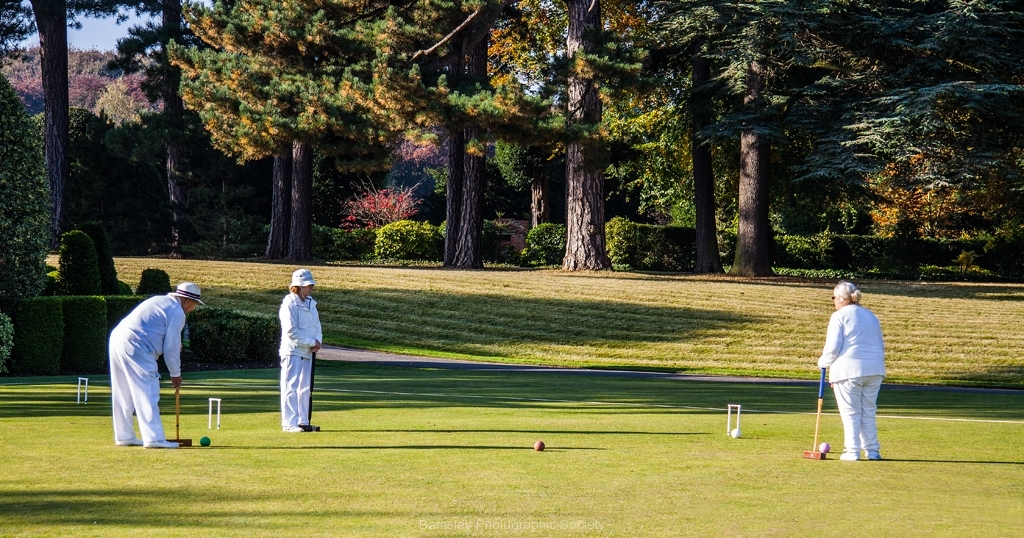ANYONE FOR CROQUET by Phil Edwards