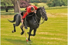 TENTPEGGING DEMONSTRATION by Phil Holmes