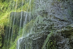 WATERFALL by Roy Lloyd