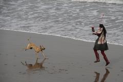 BEACH PLAY by Willem Van Herp