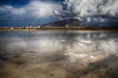 TRAPANI SALT LAKE by Willem Van Herp